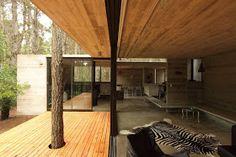 Hablemos un poco de todo: Casas de hormigón en el bosque de Mar Azul, BAK arquitectos