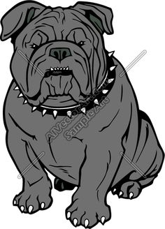 Bulldog Mascot Drawing