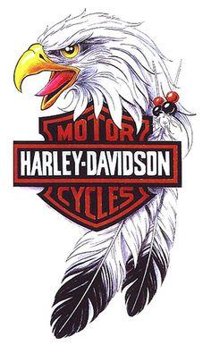 Harley Davidson Decals, Harley Davidson Posters, Harley Davidson Images, Harley Davidson Wallpaper, Harley Davidson Sportster, Steve Harley, Harley Tattoos, Lion Illustration, Harley Bikes