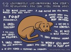 NEW YEAR'S RESOLUTIONS INSPIRATION FROM DOGS