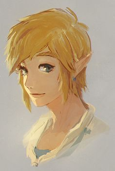 Ok. Link is either cute, sweet, handsome, brave, strong, kind, helpful, corny, romantic... Wow he's too perfect