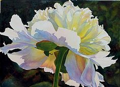 floral-watercolor-painting                                                                                                                                                      More