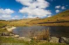 Alcock Tarn, Grasmere, the Lake District, Cumbria