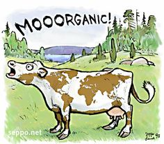Another great article on the simple benefits of organic milk! Organic Farming, Cattle, Agriculture, Cow, Moose Art, Wildlife, Cartoon, Comics, Animals