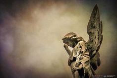 Cementerio de la Recoleta - Octubre 2014 © Edi Libedinsky