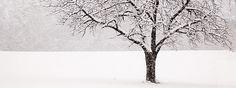 Blogparade: Hausmittel gegen Winterblues gesucht.