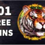 Red Stag Casino 50 Free Spins on Dolphin Reef Slot Dolphin Reef, Play Free Slots, Real Player, Dolphins, Spinning, Hand Spinning, Common Dolphin, Seal, Indoor Cycling