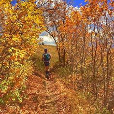 Fall in Run . #Photo @logan_l_88  No filter this is real life. This is just one of the many incredible views from this past weekend! . Welcome to #RunnerLand  Lets follow us / Tag #RunnerLand on your photos / Turn on our post notifications for featured  .