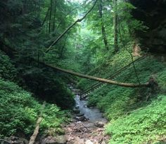 Escape To These 10 Hidden Oases In Indiana To Find Peace And Quiet