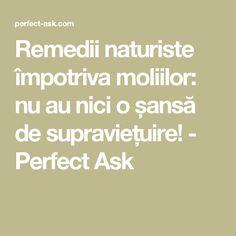 Remedii naturiste împotriva moliilor: nu au nici o șansă de supraviețuire! - Perfect Ask Salvia, Good To Know, Home And Garden, Cleaning, Pandora, Fitness, House, Medicine, Houses