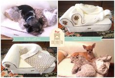 We have an elegant assortment of luxury beds and accessories for small and medium sized dogs. Create your own luxury dog beds with unique design. Handmade dog beds available online in luxury style Small Sized Dogs, Medium Sized Dogs, Designer Dog Beds, Dog Accessories, Four Legged, Dog Design, Dog Friends, Luxury Bedding, Plaid