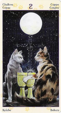 Cats in Art, Illustration and the Occult: 2 of Chalices - Tarot of Pagan Cats - rozamira tarot - Picasa Web Albums Tarot Readers, Here Kitty Kitty, Oracle Cards, Tarot Decks, Tarot Cards, Divination Cards, Occult, Cat Art, Illustration