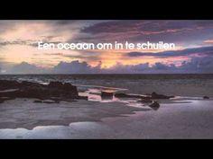Racoon - Oceaan / Alles is familie