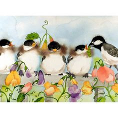 Sweet Chickadee's!