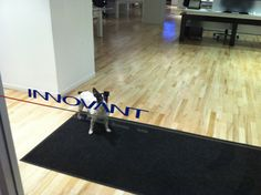 Libby moonlights as a doorman, © Innovant, Inc.