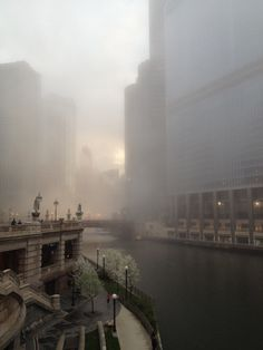 A very foggy day near the Chicago River