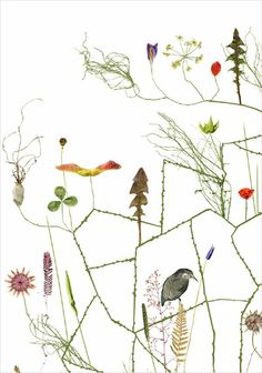 MEADOW TREE, Lotta Olsson, 122 €, http://www.shop.finelittleday.com/posters-1/other-posters/meadow-tree