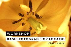 Basis fotografie in het Keukenhof - Ferry Knijn - Cafe Obscura