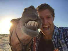 No country has more Arabian camels than Australia. And this guy seems keen to celebrate that... - Dr. Chris Brown https://www.facebook.com/dcbpets