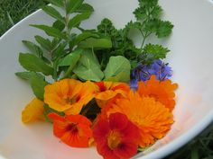Other herbs I pick to add to salads are: mint, parsley, borage flowers which have a cucumber taste, calendula flowers, nasturtium flowers which have a sweetness and nasturtium leaves have a peppery zing.