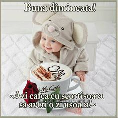 Good Morning, Crochet Hats, Teddy Bear, Wish, Thinking About You, Buen Dia, Knitting Hats, Bonjour, Teddy Bears