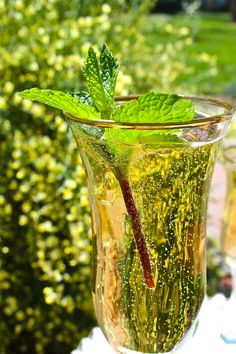 Champagne Mint Julep: In a champagne flute, add the mint leaves (twisting them as you add to release their flavor and aroma) and the bourbon, and muddle with the end of a spoon. Top with the chilled Cavicchioli and enjoy.