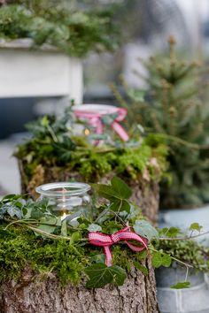 Weihnachtszauber im Novembergarten - Deko Weihnachten - Gardener Natural Christmas, Green Christmas, Rustic Christmas, Simple Christmas, Vintage Christmas, Christmas Diy, Christmas Ornaments, Christmas Garden, Minimal Christmas