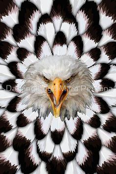 Eagle and feather Pattern Posters #posters #homedecor #wall #paper #bedroom #Leopard #albinoleopard #tiger #lion #hyenas #hyaenas #cat #animals #jaguar #LionRoar #Tigerskins #eagle #bird #eagleeye #pattern