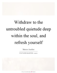 Withdraw to the untroubled quietude deep within the soul, and refresh yourself Picture Quote #1