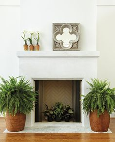 potted ferns inside and around a non working fireplace to add dramatic interest and style to your home décor