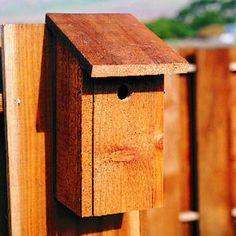 Build A Better Birdhouse