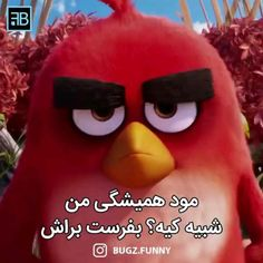 Cute Funny Baby Videos, Crazy Funny Videos, Cute Funny Babies, Funny Videos For Kids, Digimon Wallpaper, Ariana Grande Music Videos, Diy Projects For Men, Funny Valentines Day Quotes, Disney Princess Movies