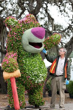 A Disney Horticultural Imagineer works on a Lots-o'-Huggin' Bear topiary. Dark Pink and White Semperflorens make up the body of the topiary