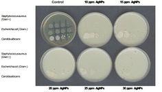 Colloidal silver as a preservative.