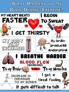 LOOK AT ME, IM HOT, SWEATY AND TIRED; WHAT A GREAT WORKOUT!!!This colorful Physical Education Expectations Poster identifies 10 important body reactions that occur during exercise or while participating in an intense PE Activity. The statements are brief, yet POWERFUL!