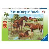 jigsaw puzzles (no more than 500 pieces)