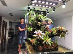 Water Terrarium, Terrarium Plants, Indoor Wall Fountains, Vivarium, Aesthetic Room Decor, Tropical Garden, Interior Design Living Room, Planters, Aquascaping