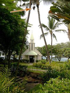 Signs of Love (Kona Hawaii)