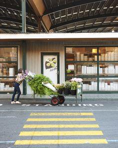 Melbourne Florist of Cecila Fox. Photos by Eve Wilson via thedesignfiles.net