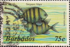 Barbados 1985 Fish SG 805B Fine Used Scott 654 Other West Indies and British Commonwealth Stamps HERE!