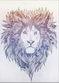 Sketch: Lion megastar media loves this designer! megastar media reviews http://www.megastarmedia.com/megastar-media-complaints.html