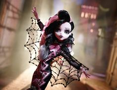 Collector Draculaura Doll. She is gorgeous!!!