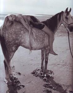 Horse on the beach.