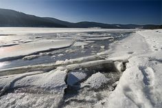Arctic Ice At Lowest Level In Decades http://n.pr/RGXNr0    arctic blackforest by crazyhorse_mk, via Flickr