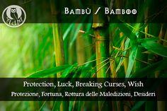 Magical Uses of Bamboo: Protection, Luck, Breaking Curses, Wish Usi Magici del Bambù: Protezione, Fortuna, Rottura delle Maledizioni, Desideri || L'antro della magia http://antrodellamagia.forumfree.it/?t=56548112