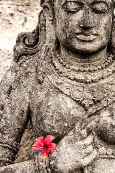 Buddha and the Flower! I was walking on the streets of Ubud, Bali when I saw this Buddha holding a flower and I instantly felt a sense of peace and calm and I'm sure it can bring nothing but positive vibes and energy!