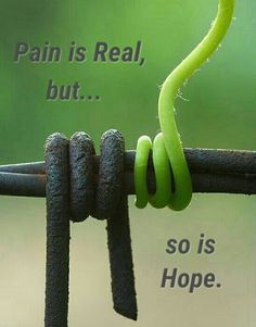 Pain is Real, but... so is Hope.