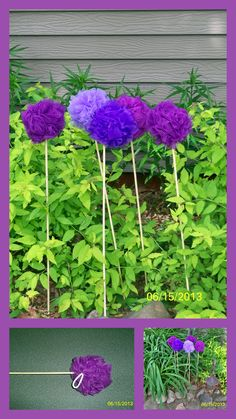 """ALLIUM"" MADE FROM BATH POUFS.  GLUE BATH POUFS TO STICKS AND THEN CUT OFF THE WHITE ROPE HANGER.  LET GLUE DRY AND ""PLANT"" OUTSIDE."