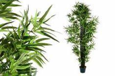 Műnövény - Bambusz 190 cm Herbs, Plants, Products, Bamboo, Herb, Plant, Gadget, Planets, Medicinal Plants