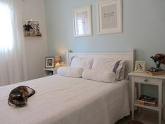 Turquoise bedroom with a cat Sharon Rubinshtein - Granovsky